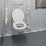 【トイレにコバエがいたら要注意!】発生源を確実に駆除する方法