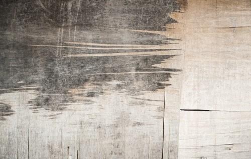 【賃貸住人必見!】壁紙クロスの黒カビを5分で掃除する方法
