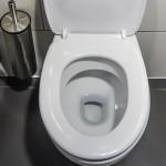 【トイレ詰まり】押しちゃダメ!?ラバーカップの正しい使い方